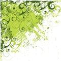 Estratto verde ad angolo Fotografia Stock