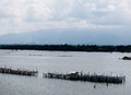 Estuary landscape seascape panorama view at river outfall in chantaburi province thailand with vintage local fisherman s lifestyle Stock Photos