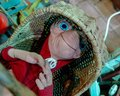stock image of  ET stuffed toy from 80`s movie, laying in straw crib