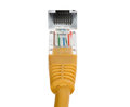 Ethernet cable and network connector Royalty Free Stock Photo