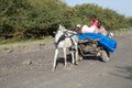 Ethiopian horse carriage Royalty Free Stock Photo
