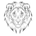 Ethnic hand drawing  head of lion. totem / tattoo design. Use for print, posters, t-shirts. Vector illustration Royalty Free Stock Photo