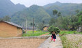 Ethnic minority woman carrying grass to home