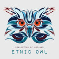 Ethnic patterned head of owl on the grey background / african / indian / totem / tattoo design. Use for print, posters, t-shirts.