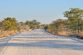 Etosha road landscape near halali in the national park namibia Royalty Free Stock Image