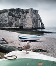 Etretat cliff and seagull in normandy france a on the beach Stock Photo