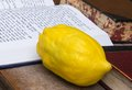Etrog and siddur book objects for sukkot celebration Stock Photo
