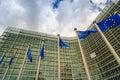 EU flags Royalty Free Stock Photo