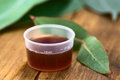 Eucalyptus cough syrup in medicine cup with fresh leaves selective focus focus on the ml sign on the cup Royalty Free Stock Image