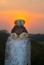 Euphoria teddy bear sits on a barrier in the road in the sunset light Stock Photography