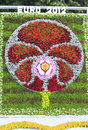 Euro 2012 symbol. Flower Show in Kiev Stock Photography