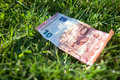 Euro banknote with rain droplets lying on the grass Royalty Free Stock Image