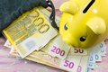 Euro bills and piggy bank on the table Stock Image