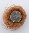 Euro coins in nest on gray Stock Photos
