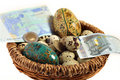 Euro nest egg Royalty Free Stock Photography