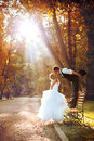 European bride groom kissing park Stock Images