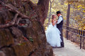 European bride groom park Royalty Free Stock Photography