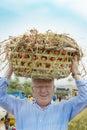 European man carries tomato basket on head like african women do Royalty Free Stock Photo