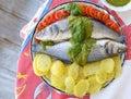 European sea bass branzino steaming basil sauce recipe high angle up view Royalty Free Stock Photo