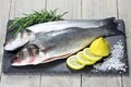 European seabass Royalty Free Stock Photo