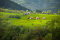 European summer landscape with mountains meadows and houses green Royalty Free Stock Photos