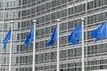 European Union flags Royalty Free Stock Photo