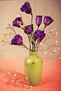 Eustoma close up shot of flowers in the vase Stock Images