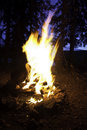 Evening Campfire Royalty Free Stock Photos