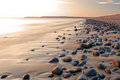 Evening on the coast light pebble ridge at westward ho devon england Stock Image