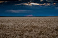 Evening field and sky landscape dark Royalty Free Stock Images