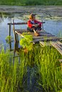 Evening on lake the boy sits a wooden scaffold Royalty Free Stock Photography