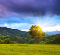 Evening landscape in the mountains ukraine Stock Photography