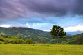 Evening landscape in the mountains ukraine Royalty Free Stock Photography