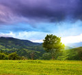 Evening landscape in the mountains ukraine Royalty Free Stock Image