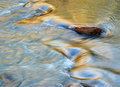 Evening on the river abstract background rapid Royalty Free Stock Photos
