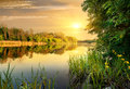 Evening on river bright yellow a calm in forest Royalty Free Stock Images