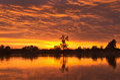Evening sunset on the river the sun set over the horizon summer desna ukraine Royalty Free Stock Photo
