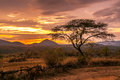 Evening view of the territory of the tribe bana in ethiopia Royalty Free Stock Photo