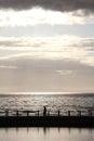 Evening walk walking the dog on the beach Stock Image