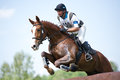 Eventer on horse is overcomes the Log fence Royalty Free Stock Images