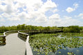 Everglades National Park Royalty Free Stock Photo