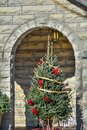 Christmas Tree in Stone Archway of Church Royalty Free Stock Photo