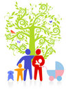 Evergreen family tree Royalty Free Stock Images