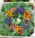 Evergreen wreath Royalty Free Stock Photography