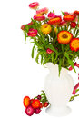 Everlasting flowers in vase fresh colorful bouquet isolated on white background Stock Image