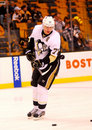 Evgeni malkin pittsburgh penguins Image stock