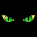 Evil Green Eye Stock Image