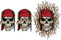Evil pirate skull versions of a undead Royalty Free Stock Image