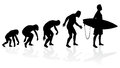 Evolution of the surfer illustration depicting a male from ape to in silhouette Stock Photography