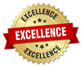 Excellence 3d gold badge